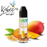 20/60ml - VAPE SHOT KABEE - SPLASH