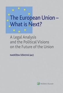 The European Union - What is Next?