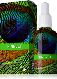 KINGVET 30ml ENERGY