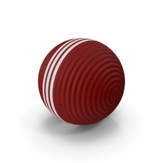 Croquet Ball White